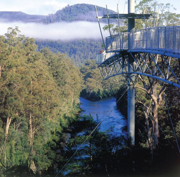 Tourism Tahune Airwalk and Visitors Centre Tasmania Nature View